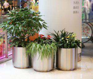 怎样选购不锈钢花盆?